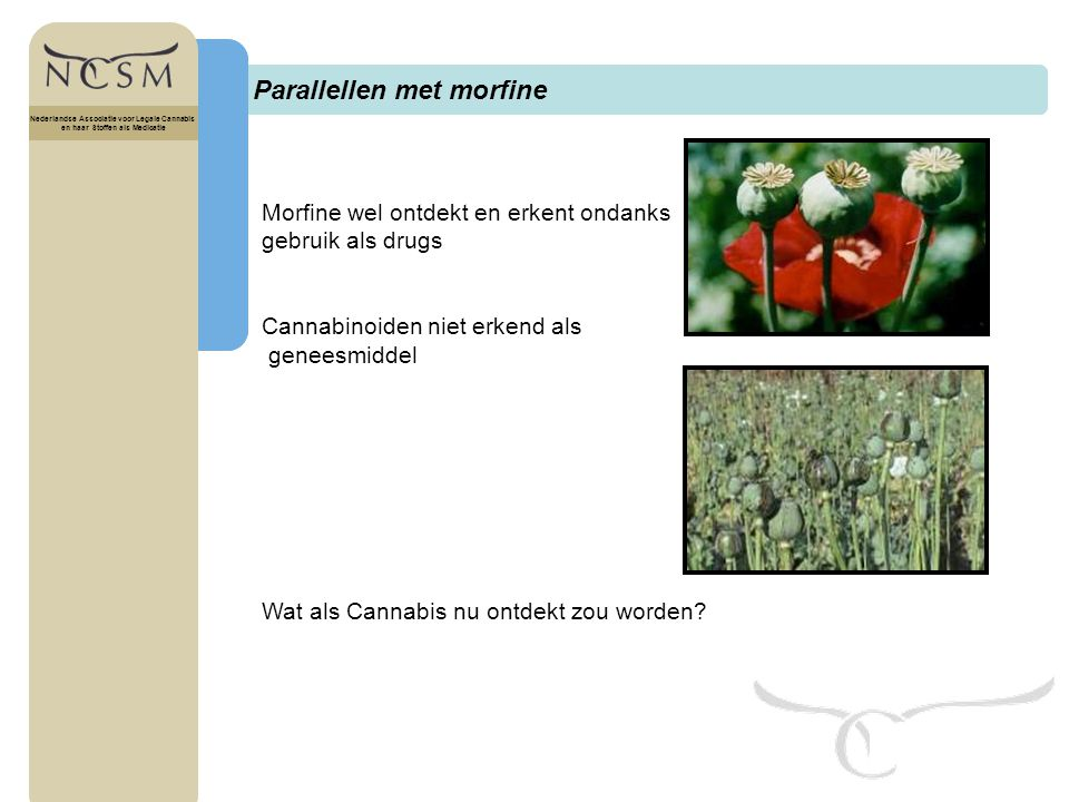 Titel Nederlandse Associatie voor Legale Cannabis en haar Stoffen als Medicatie Cannabinoïd receptoren Nederlandse Associatie voor Legale Cannabis en haar Stoffen als Medicatie - CB1 receptoren: centraal zenuwstelsel - CB2 receptoren: immuunsysteem
