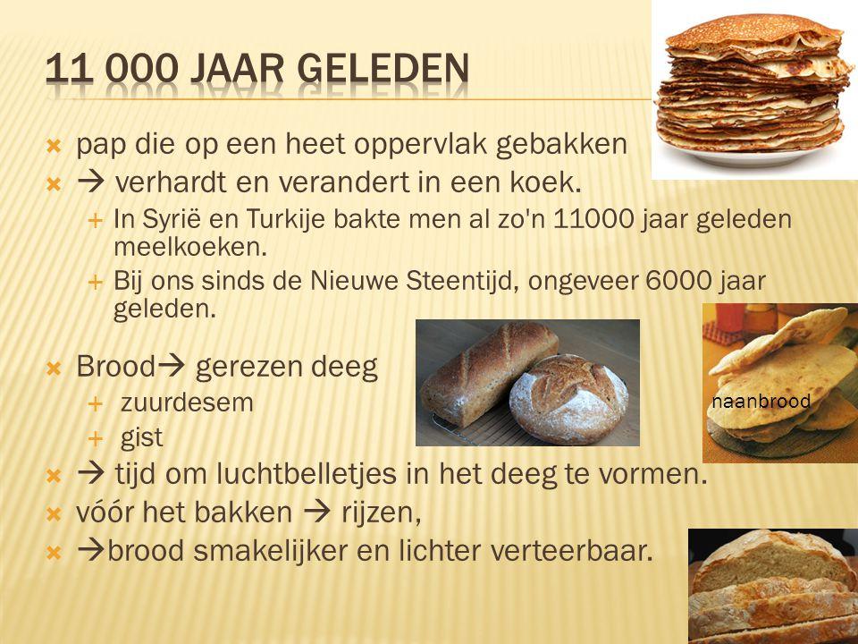  pap die op een heet oppervlak gebakken   verhardt en verandert in een koek.  In Syrië en Turkije bakte men al zo'n 11000 jaar geleden meelkoeken.