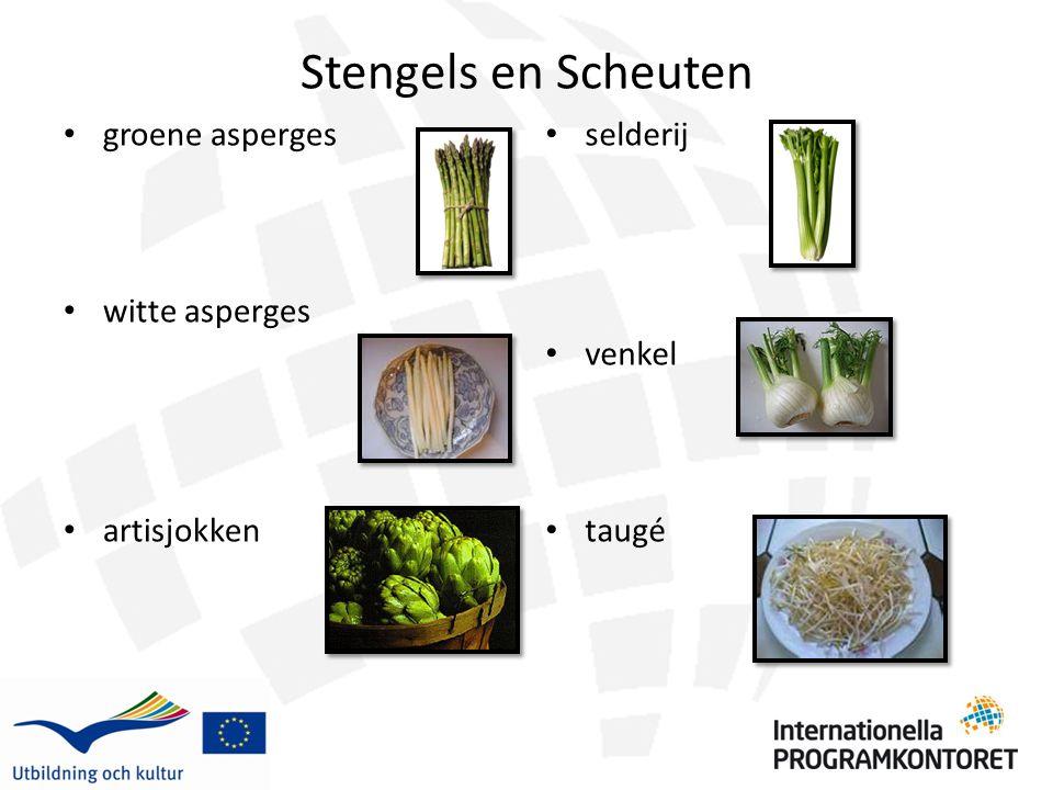 Stengels en Scheuten groene asperges witte asperges artisjokken selderij venkel taugé