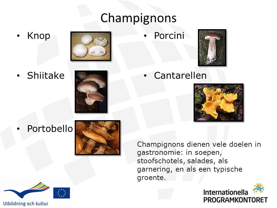 Champignons Knop Shiitake Portobello Porcini Cantarellen Champignons dienen vele doelen in gastronomie: in soepen, stoofschotels, salades, als garneri