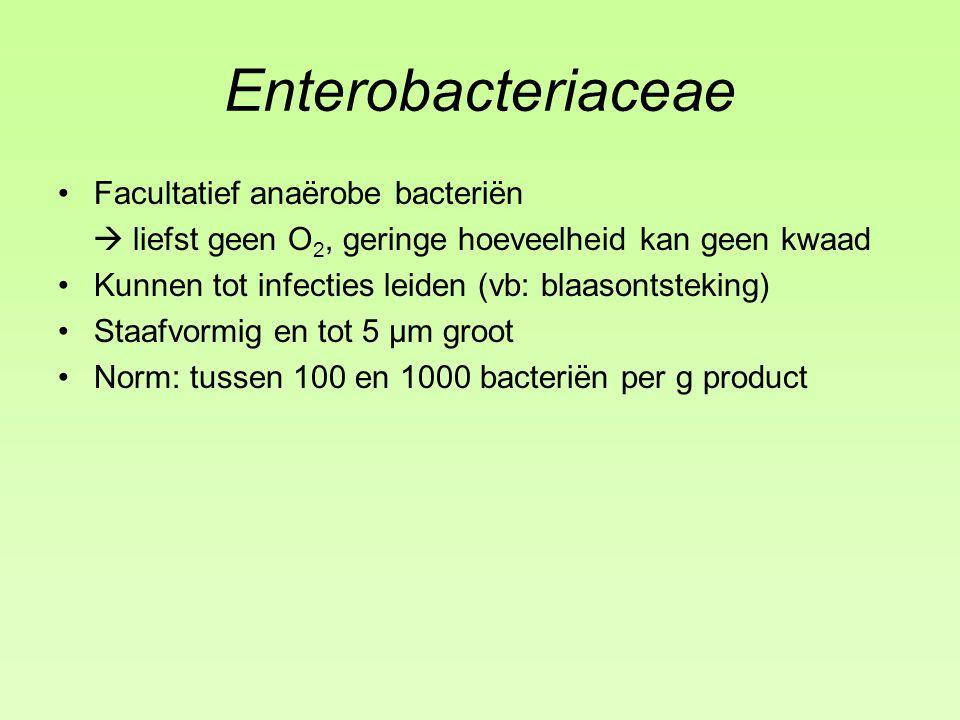 Enterobacteriaceae Facultatief anaërobe bacteriën  liefst geen O 2, geringe hoeveelheid kan geen kwaad Kunnen tot infecties leiden (vb: blaasontsteking) Staafvormig en tot 5 µm groot Norm: tussen 100 en 1000 bacteriën per g product