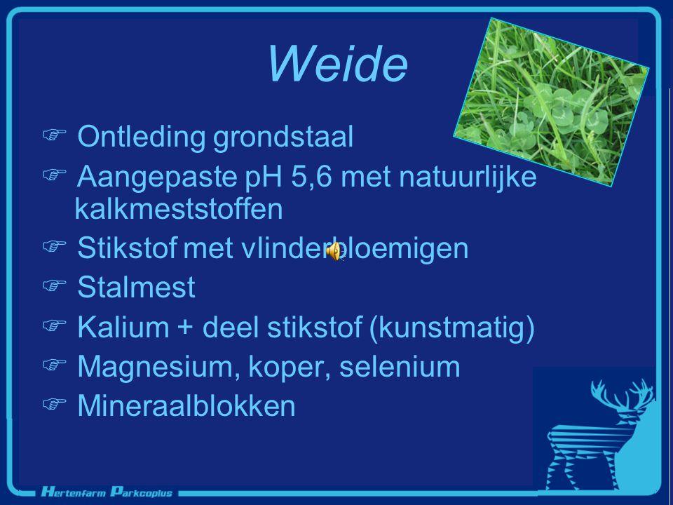 Weide  Ontleding grondstaal  Aangepaste pH 5,6 met natuurlijke kalkmeststoffen  Stikstof met vlinderbloemigen talmest  Kalium + deel stikstof (kun