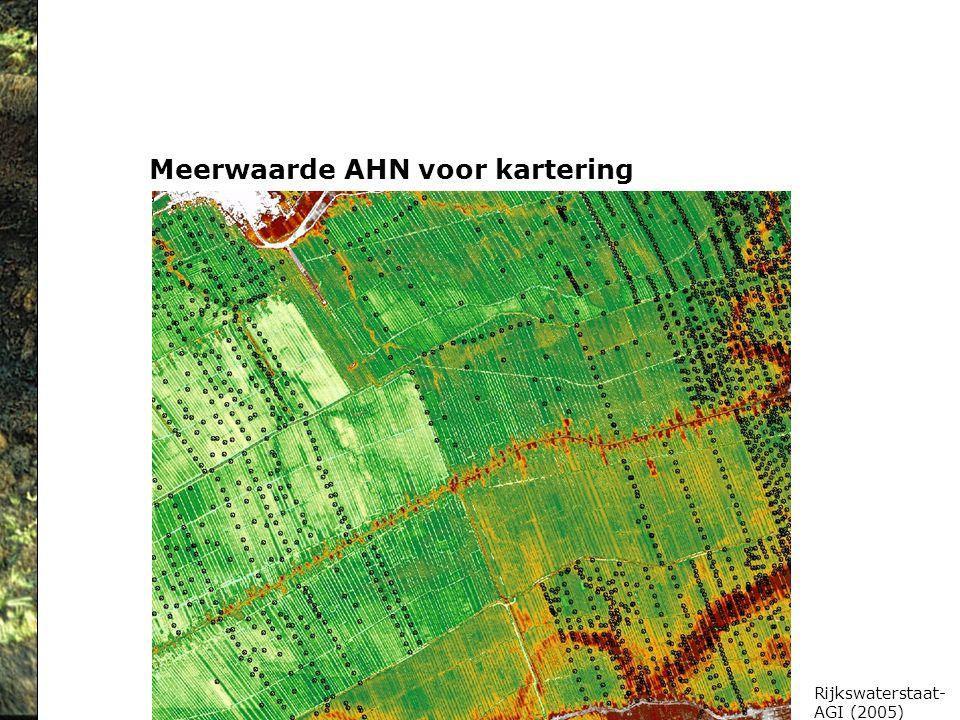 Meerwaarde AHN voor kartering Rijkswaterstaat- AGI (2005)