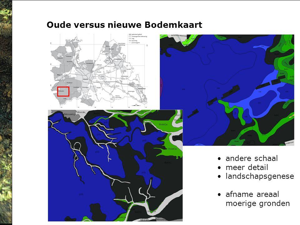 Oude versus nieuwe Bodemkaart andere schaal meer detail landschapsgenese afname areaal moerige gronden