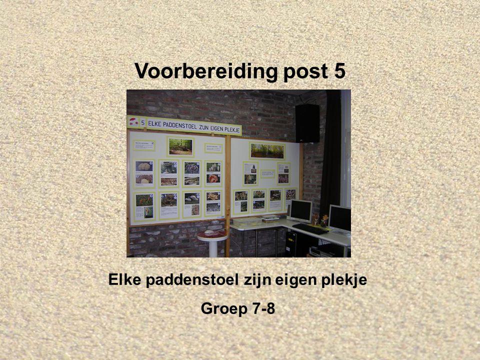 Voorbereiding post 5 Elke paddenstoel zijn eigen plekje Groep 7-8