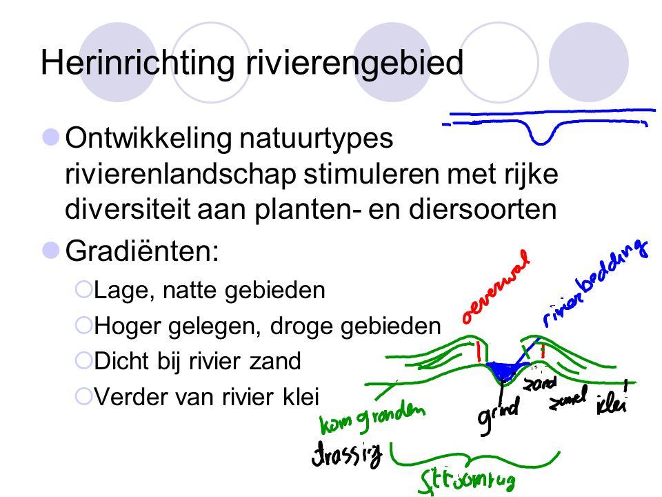 Herinrichting rivierengebied Ontwikkeling natuurtypes rivierenlandschap stimuleren met rijke diversiteit aan planten- en diersoorten Gradiënten:  Lag
