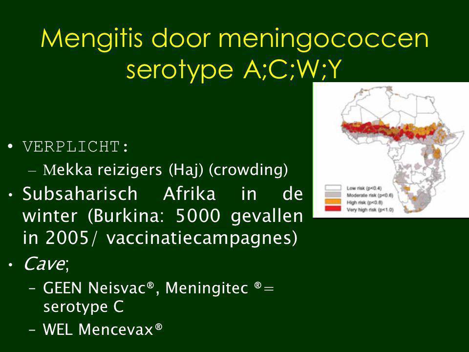 Mengitis door meningococcen serotype A;C;W;Y VERPLICHT: –M ekka reizigers (Haj) (crowding) Subsaharisch Afrika in de winter (Burkina: 5000 gevallen in