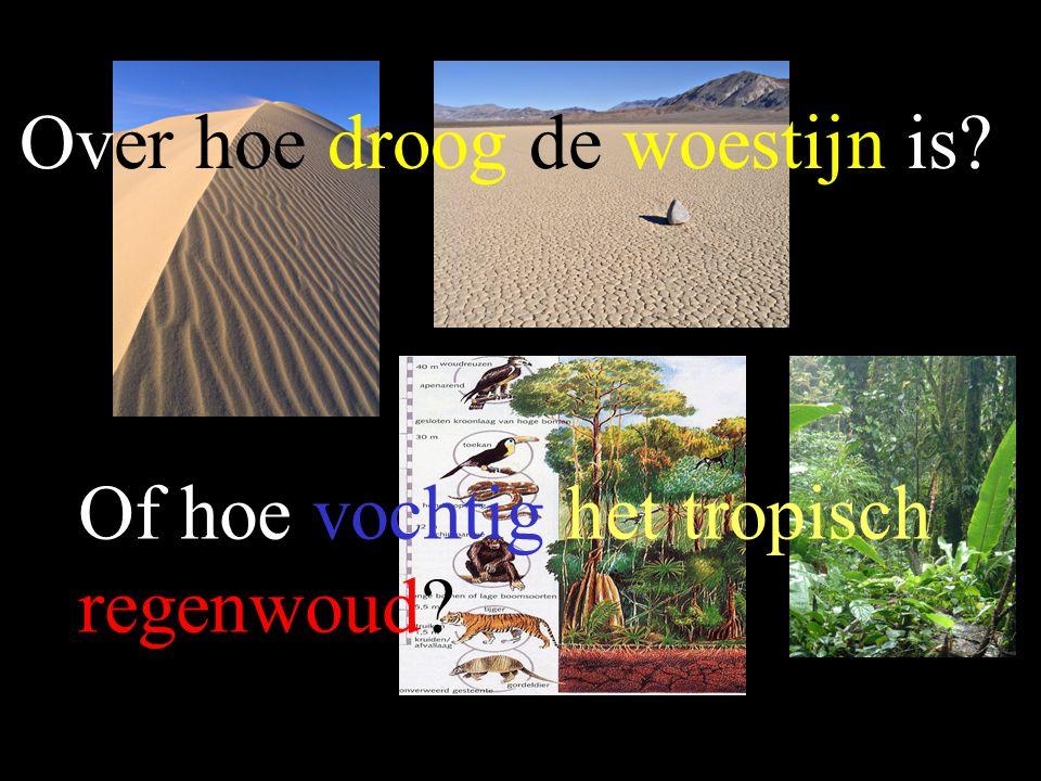 Over hoe droog de woestijn is? Of hoe vochtig het tropisch regenwoud?