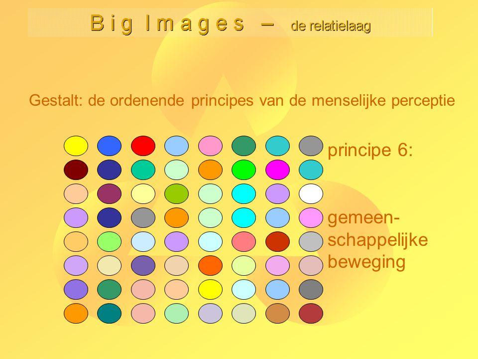 Gestalt: de ordenende principes van de menselijke perceptie principe 6: gemeen- schappelijke beweging