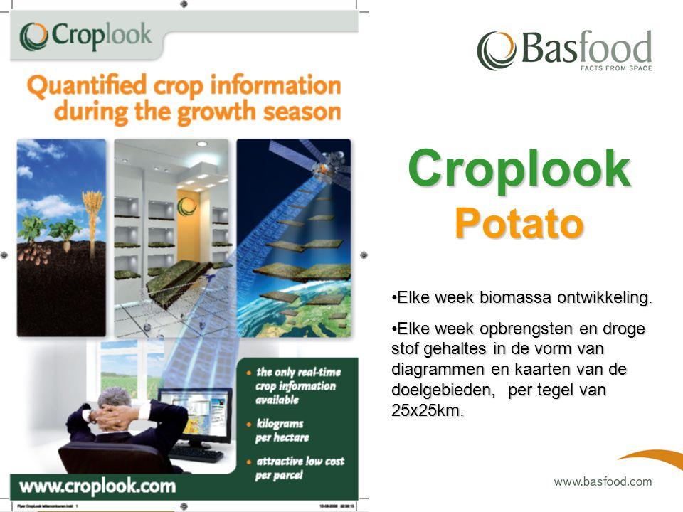 Eind juli en eind augustus bepaling van het aardappelareaal in de doelgebieden per regio van 25x25 km. Croplook Potato 20-8-2008