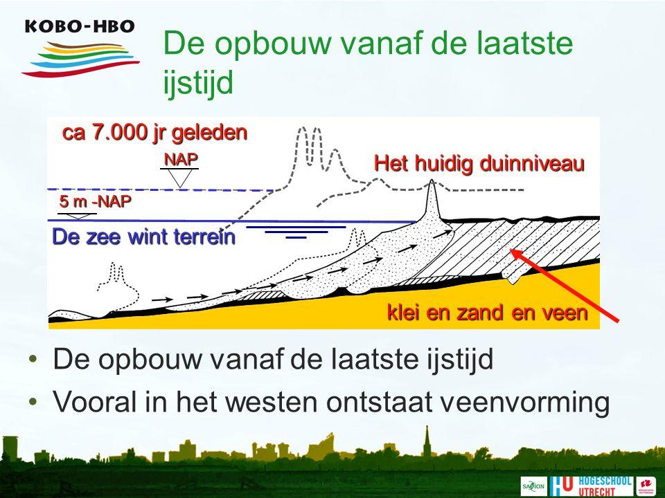 De opbouw vanaf de laatste ijstijd Vooral in het westen ontstaat veenvormingNAP 5 m -NAP De zee wint terrein Het huidig duinniveau klei en zand en vee