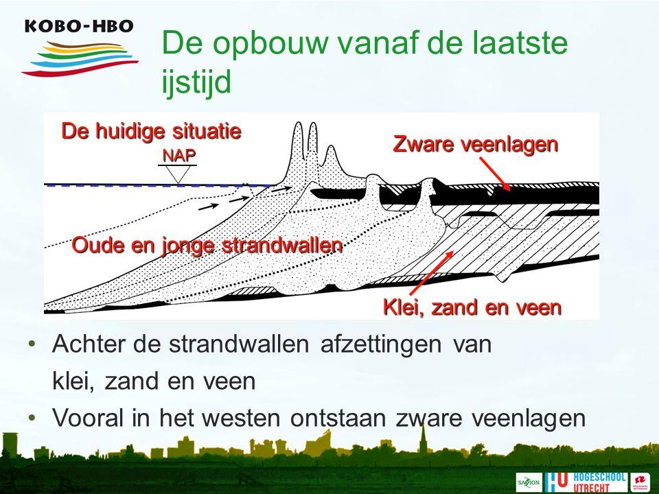 De opbouw vanaf de laatste ijstijd Achter de strandwallen afzettingen van klei, zand en veen Vooral in het westen ontstaan zware veenlagenNAP Oude en
