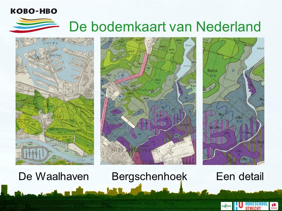 De bodemkaart van Nederland De WaalhavenBergschenhoekEen detail