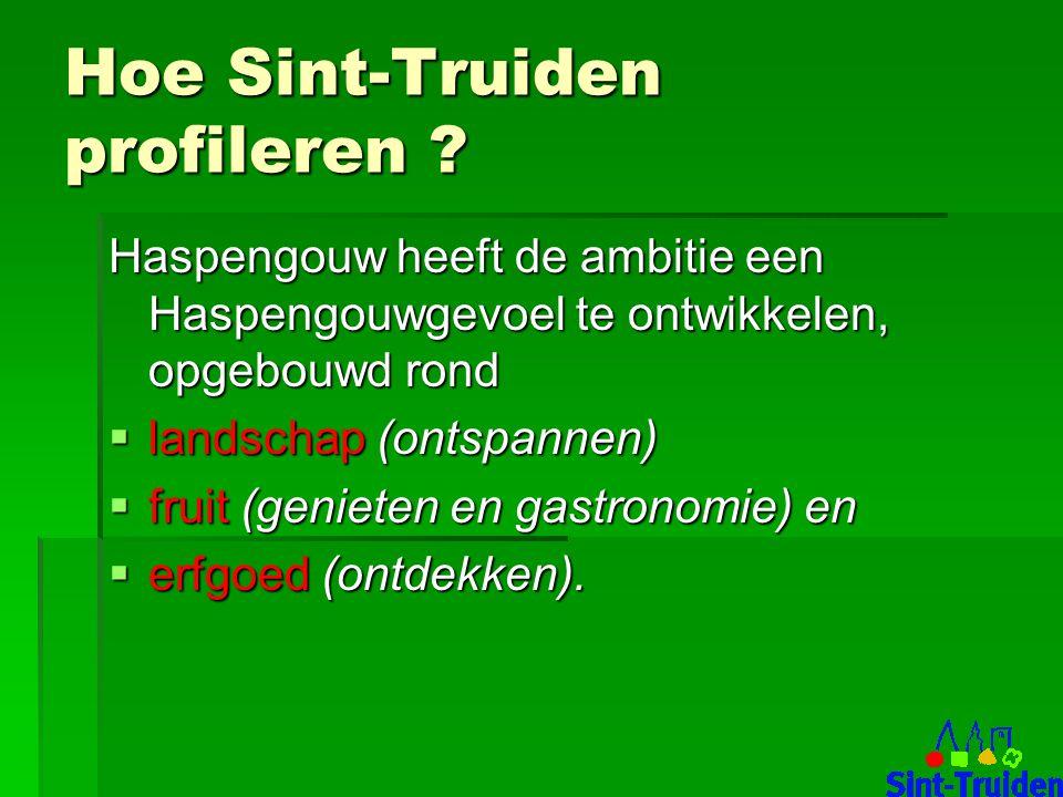 Hoe Sint-Truiden profileren .
