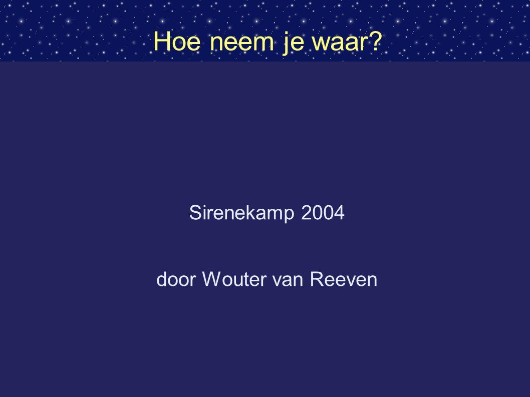 Hoe neem je waar? Sirenekamp 2004 door Wouter van Reeven