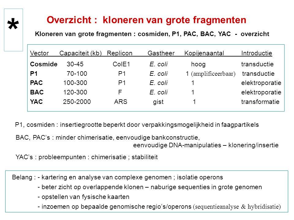 Kloneren van grote fragmenten : cosmiden, P1, PAC, BAC, YAC - overzicht Vector Capaciteit (kb) RepliconGastheer Kopijenaantal Introductie Cosmide 30-4