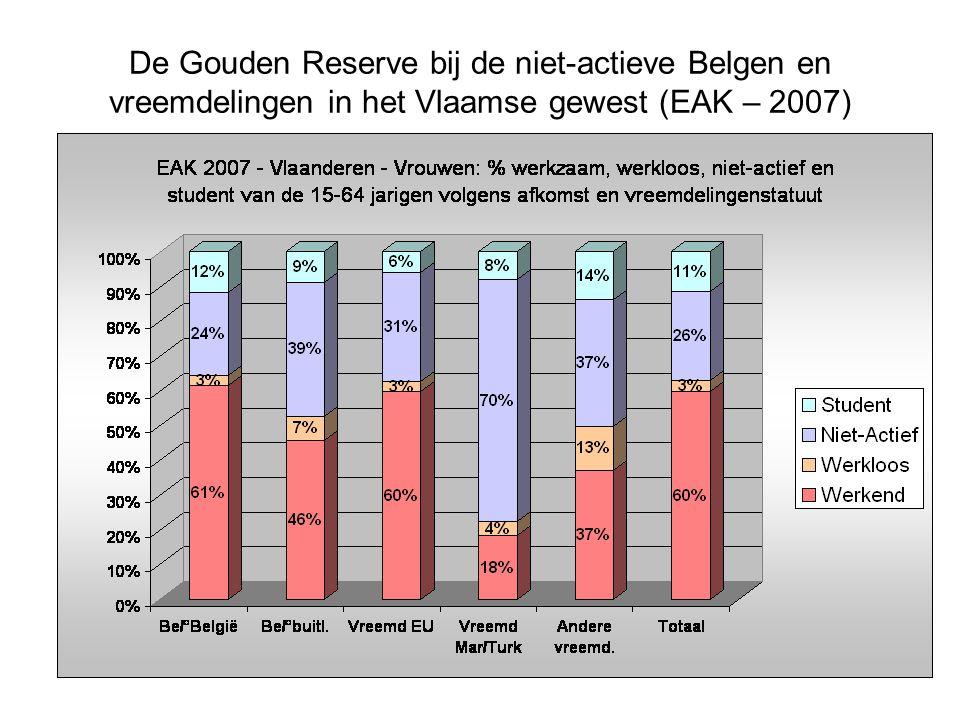 De Gouden Reserve bij de niet-actieve Belgen en vreemdelingen in het Vlaamse gewest (EAK – 2007)