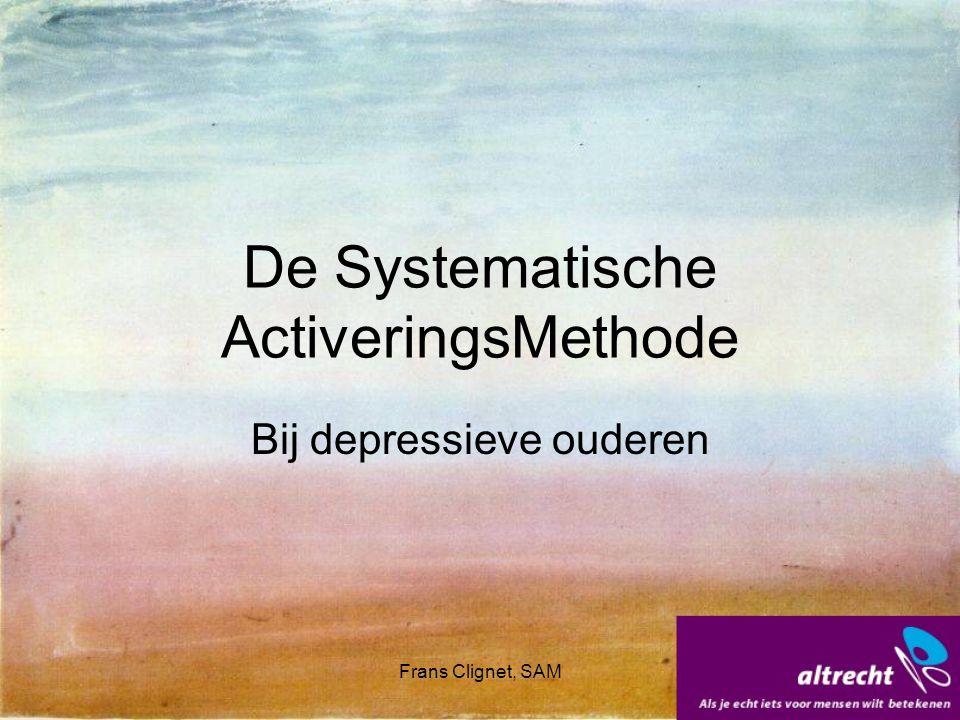 Frans Clignet, SAM Hr van Buren en de SAM Maken van een weekplan, Eenmalige of terugkerende activiteiten, Inzetten van hulpbronnen, Activiteiten Experiment, Terugkijken: wat heeft geholpen.