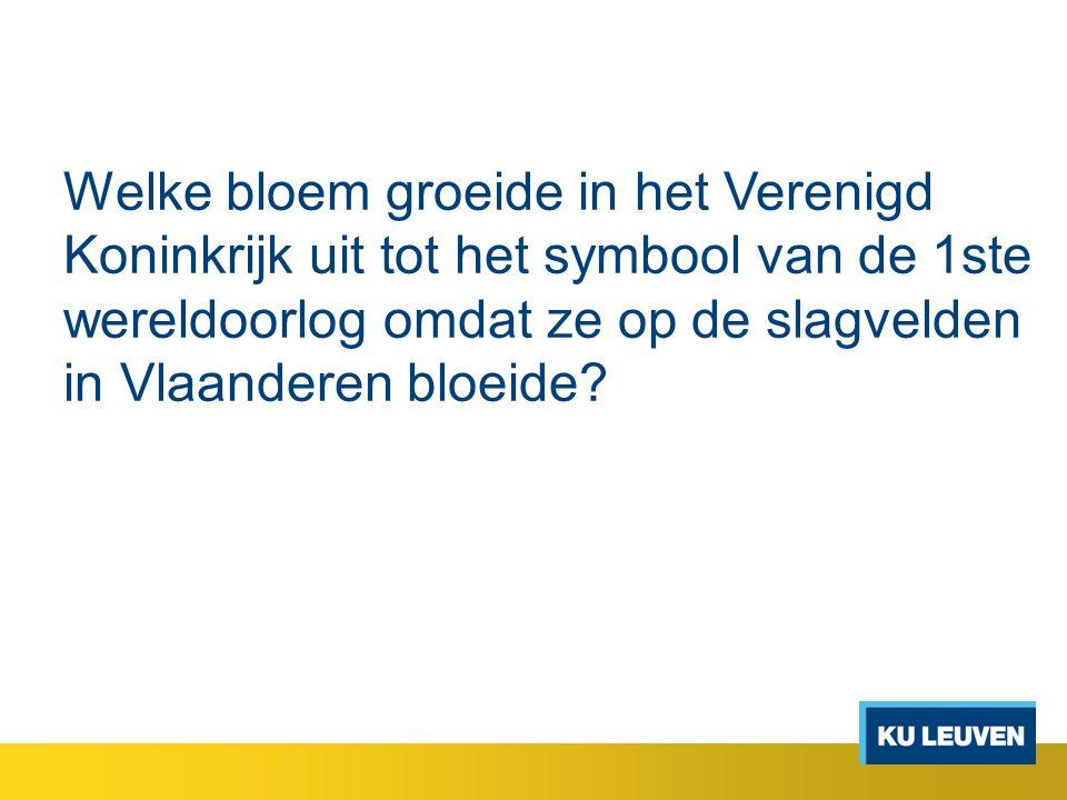 Welke bloem groeide in het Verenigd Koninkrijk uit tot het symbool van de 1ste wereldoorlog omdat ze op de slagvelden in Vlaanderen bloeide?
