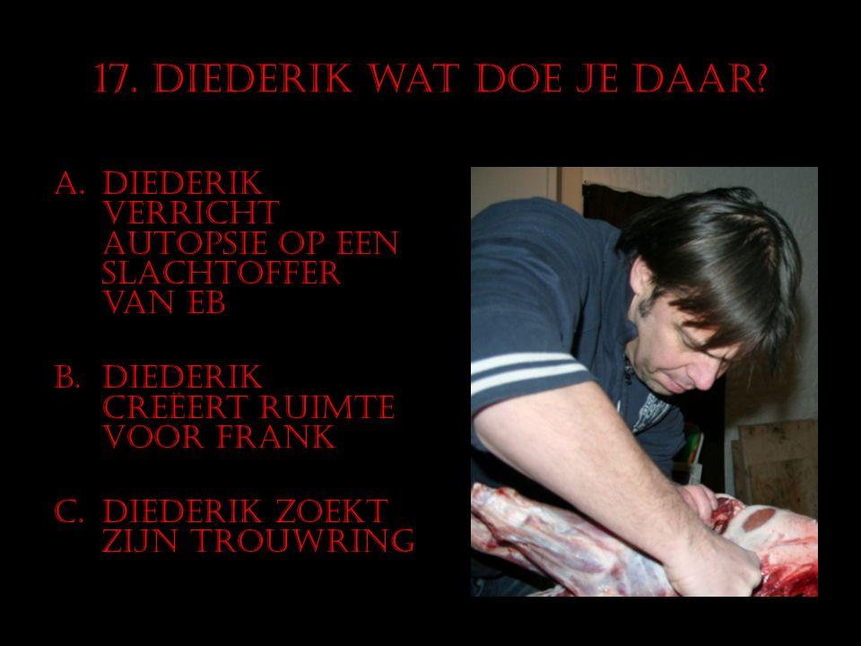 17. Diederik wat doe je daar? A.Diederik verricht autopsie op een slachtoffer van EB B.Diederik creëert ruimte voor Frank C.Diederik zoekt zijn trouwr