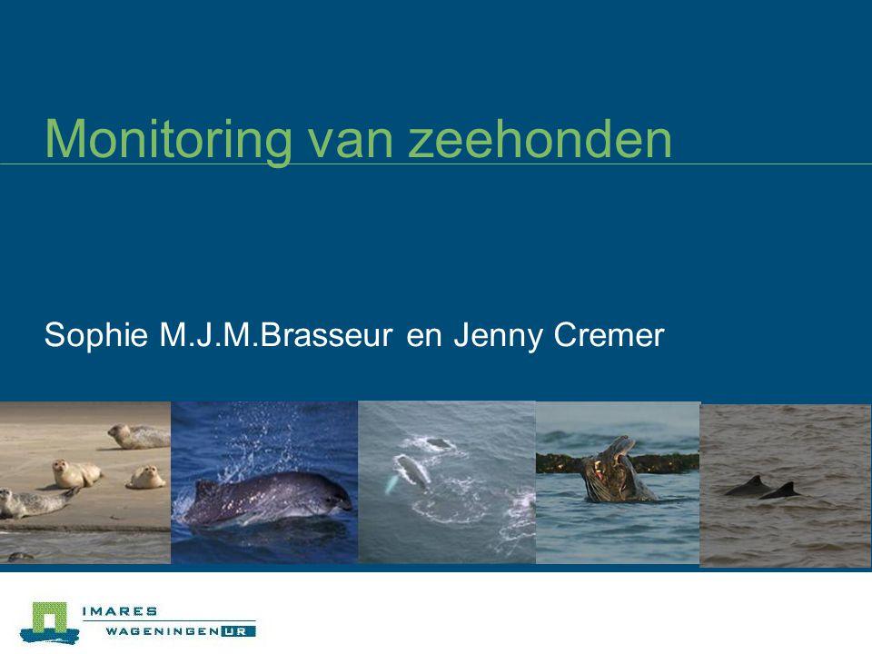 Aantallen geteld in Nederland Correctie voor schatting populatie grootte ~x 1.5
