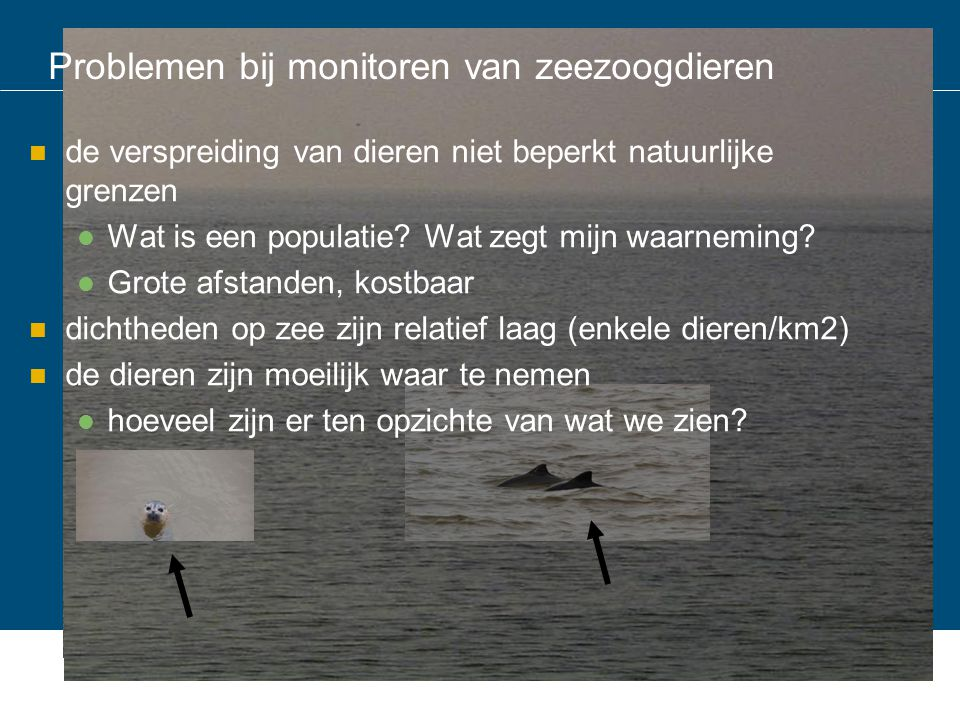 Verschillende methodes om de dieren waar te nemen zeehonden walvisachtigen komen aan land maken geluid Zichtwaarnemingen in het water, vanaf land, boot, vliegtuig Geluid onderwater Zichtwaarnemingen op de kant, vanaf land, boot, vliegtuig Telemetrie