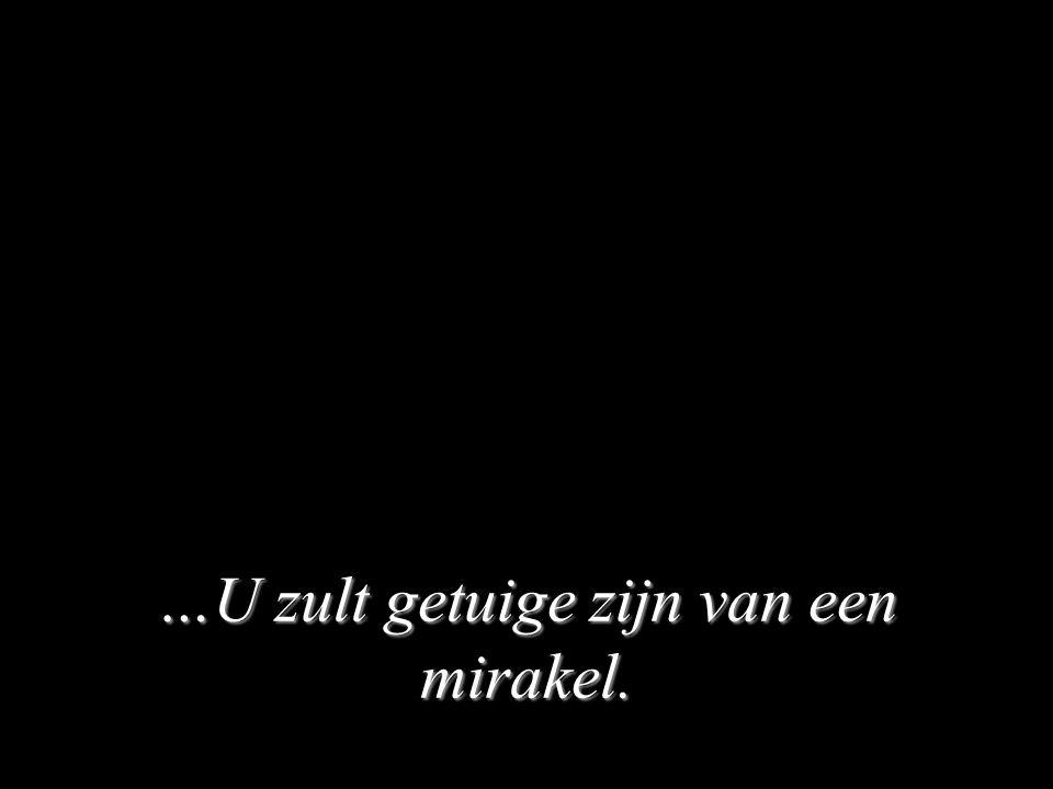 …U zult getuige zijn van een mirakel.