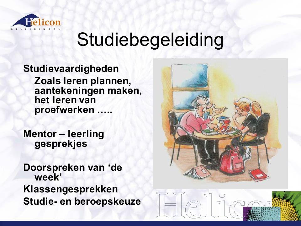 Studiebegeleiding Studievaardigheden Zoals leren plannen, aantekeningen maken, het leren van proefwerken ….. Mentor – leerling gesprekjes Doorspreken