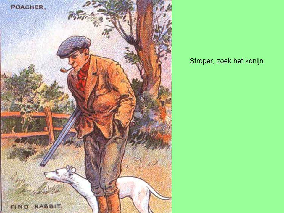 Stroper, zoek het konijn.