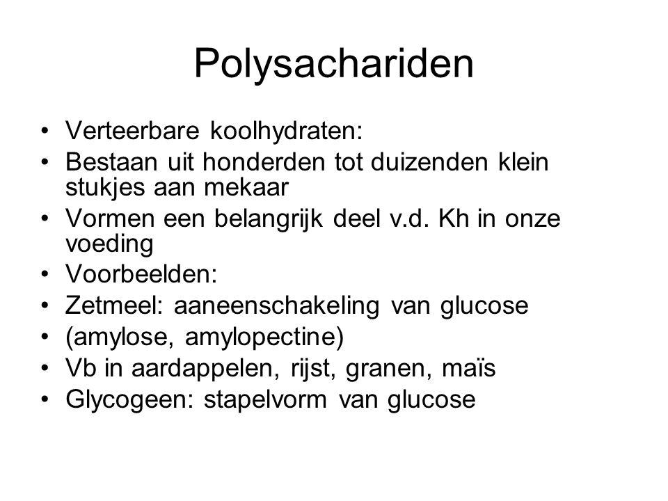 Polysachariden Verteerbare koolhydraten: Bestaan uit honderden tot duizenden klein stukjes aan mekaar Vormen een belangrijk deel v.d. Kh in onze voedi