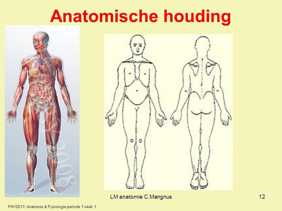 FHV2011/ Anatomie & Fysiologie periode 1 week 1 Anatomische houding LM anatomie C.Mangnus12