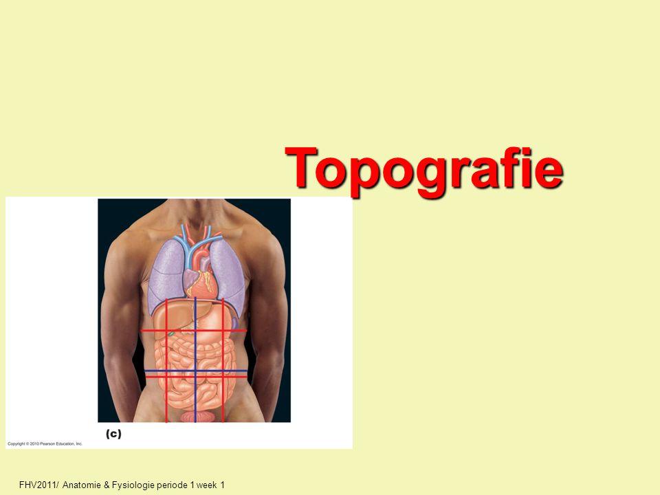 FHV2011/ Anatomie & Fysiologie periode 1 week 1 Topografie
