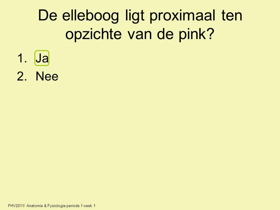 De elleboog ligt proximaal ten opzichte van de pink? 1.Ja 2.Nee