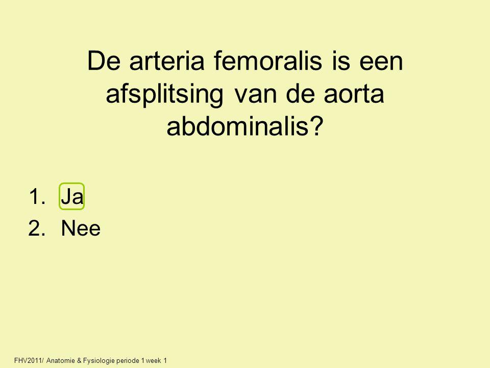FHV2011/ Anatomie & Fysiologie periode 1 week 1 De arteria femoralis is een afsplitsing van de aorta abdominalis? 1.Ja 2.Nee