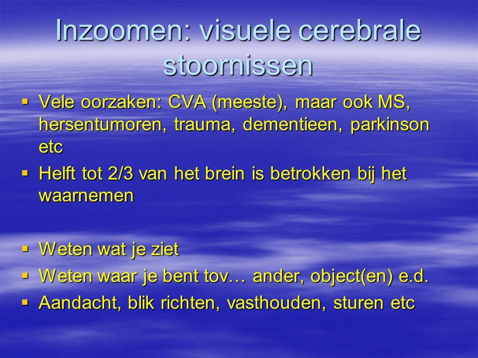 Inzoomen: visuele cerebrale stoornissen  Vele oorzaken: CVA (meeste), maar ook MS, hersentumoren, trauma, dementieen, parkinson etc  Helft tot 2/3 v