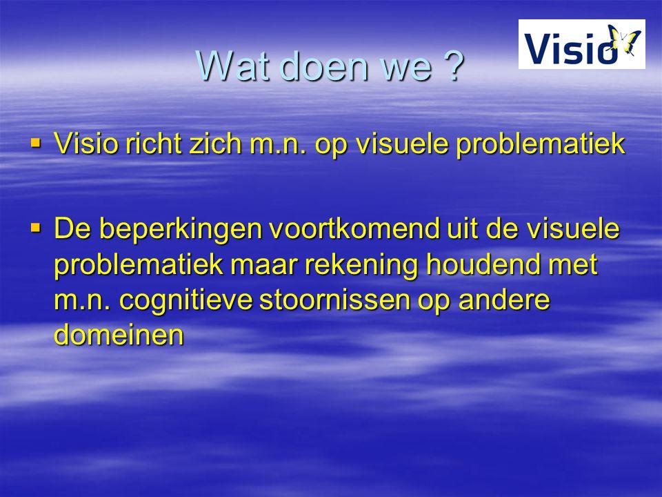 Wat doen we ?  Visio richt zich m.n. op visuele problematiek  De beperkingen voortkomend uit de visuele problematiek maar rekening houdend met m.n.
