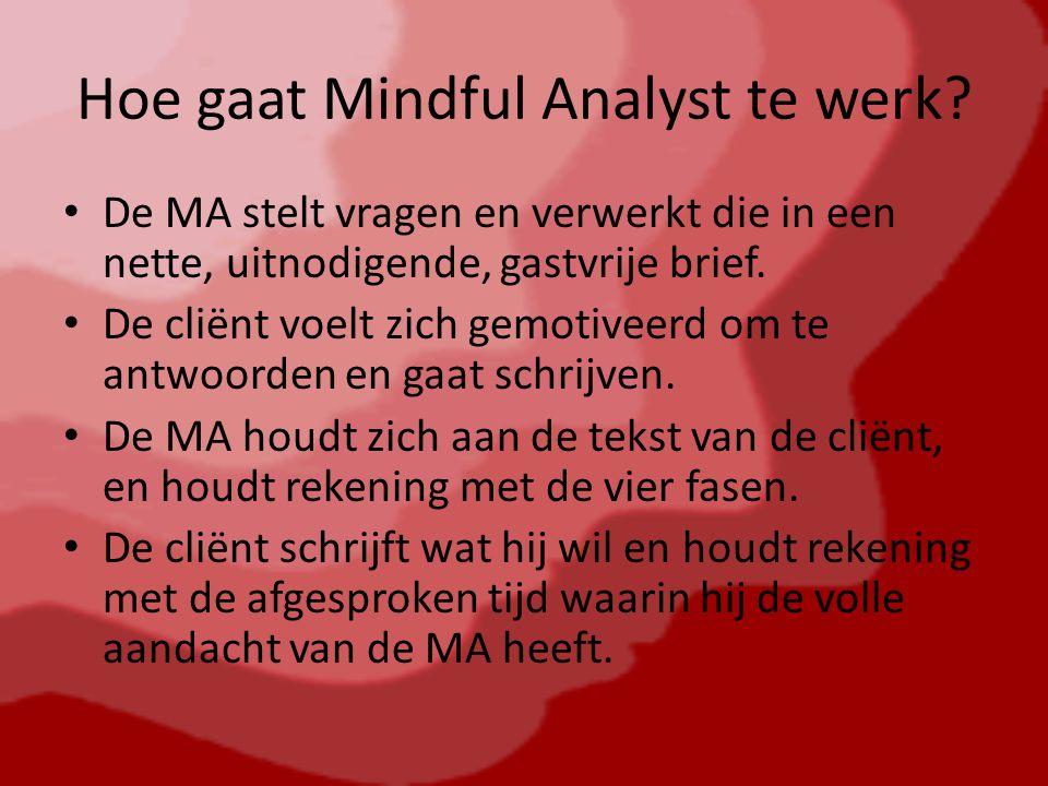 Hoe gaat Mindful Analyst te werk.
