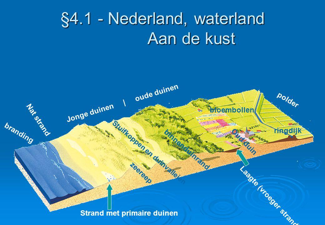 §4.1 - Nederland, waterland Aan de kust branding Nat strand Jonge duinen | oude duinen polder Strand met primaire duinen zeereep Stuifkoppen en duinva