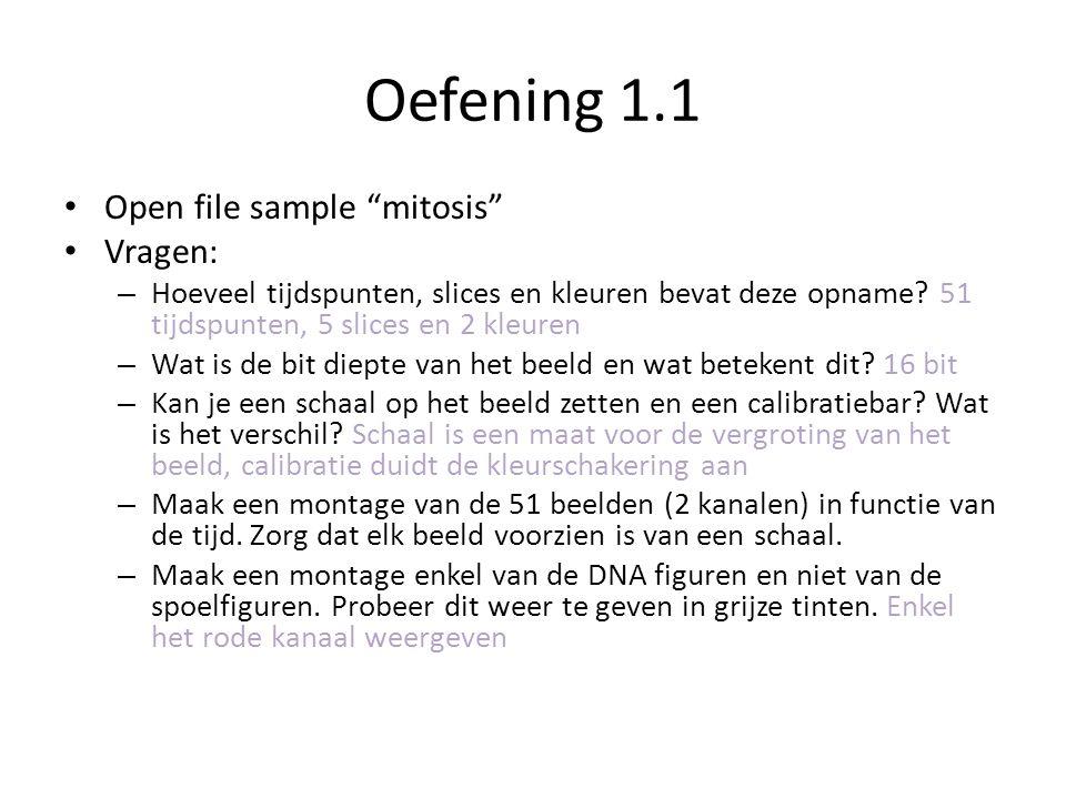 Oefening 1.1 Open file sample mitosis Vragen: – Hoeveel tijdspunten, slices en kleuren bevat deze opname.