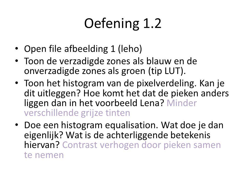 Oefening 1.2 Open file afbeelding 1 (leho) Toon de verzadigde zones als blauw en de onverzadigde zones als groen (tip LUT).