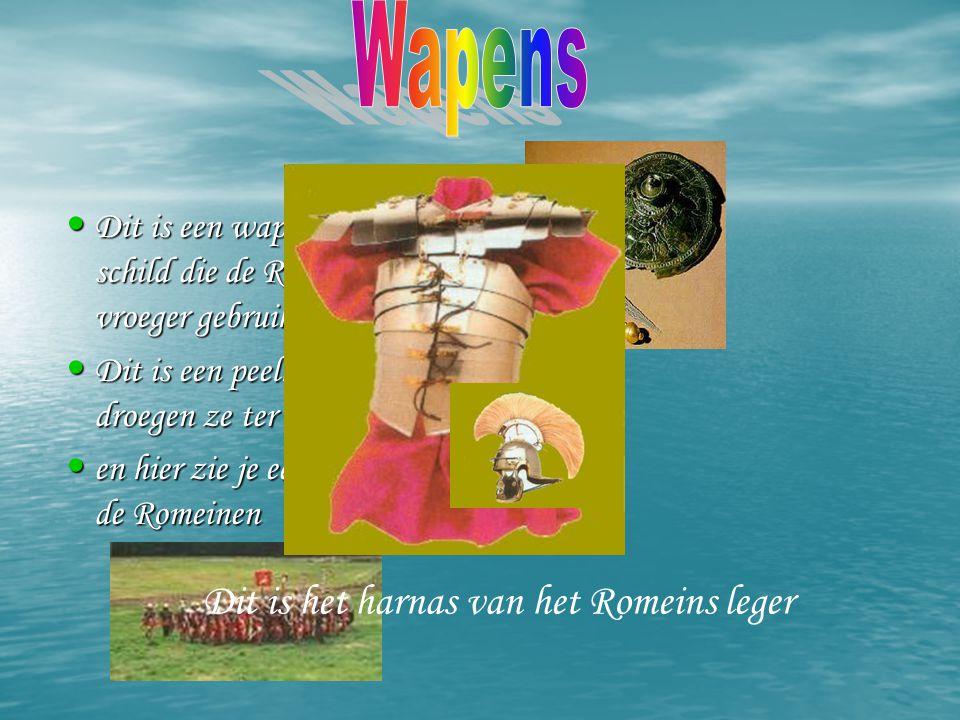 Dit droeg een rijk Romeins vrouw Dit droeg een rijk Romeins gezin Zo zagen rijke romeinen er ook uit