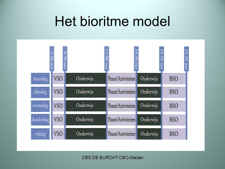 Het bioritme model CBS DE BURCHT CBO-Meilan