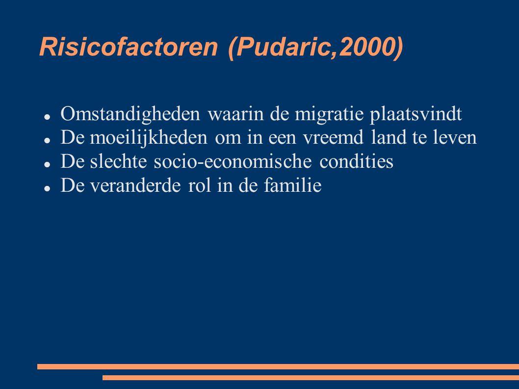 Risicofactoren (Pudaric,2000) Omstandigheden waarin de migratie plaatsvindt De moeilijkheden om in een vreemd land te leven De slechte socio-economische condities De veranderde rol in de familie
