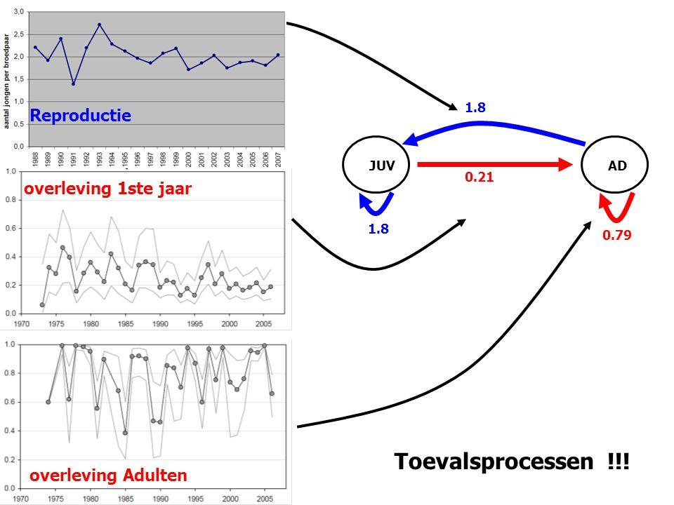 1.8 0.21 JUVAD 0.79 Toevalsprocessen !!! overleving 1ste jaar overleving Adulten Reproductie