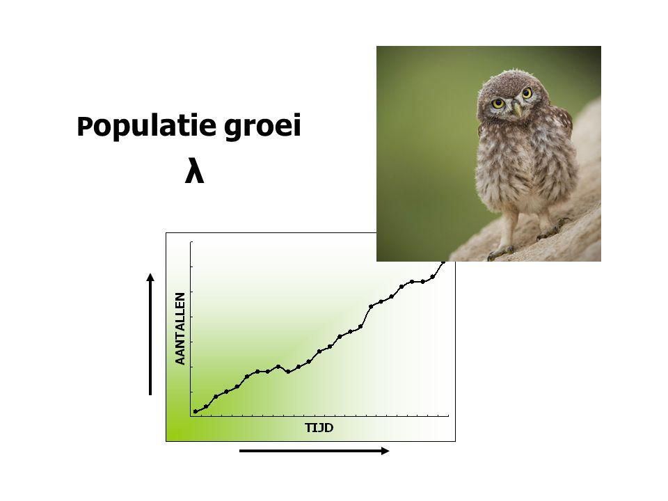 P opulatie groei λ