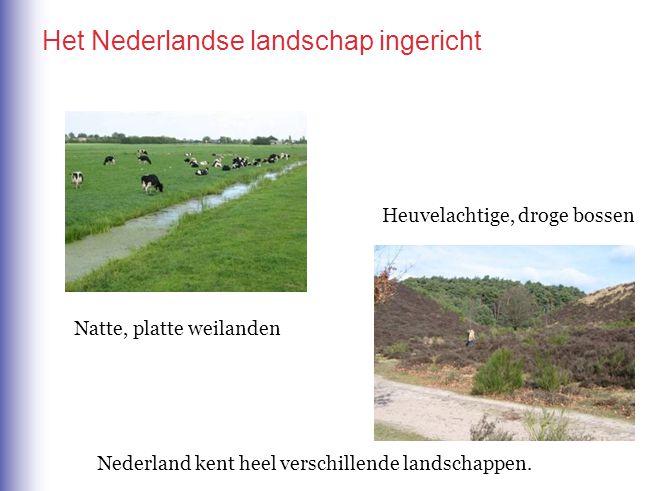 Het Nederlandse landschap ingericht Nederland kent heel verschillende landschappen. Natte, platte weilanden Heuvelachtige, droge bossen
