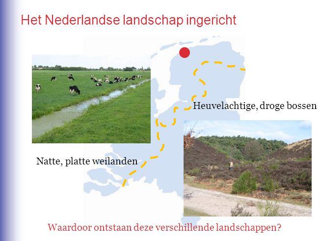 Het Nederlandse landschap ingericht Heuvelachtige, droge bossen Natte, platte weilanden Waardoor ontstaan deze verschillende landschappen.