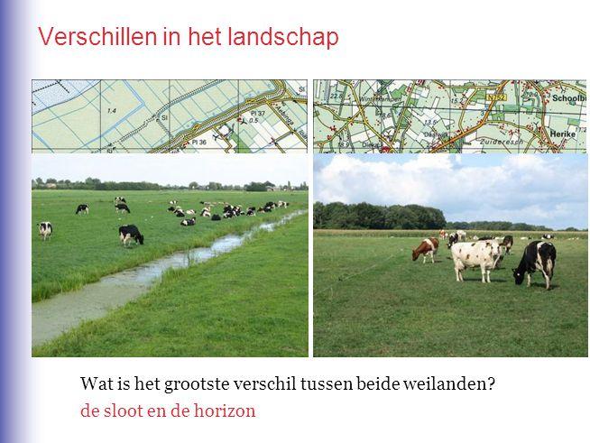 Verschillen in het landschap Wat is het grootste verschil tussen beide weilanden.