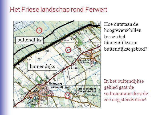 Het Friese landschap rond Ferwert buitendijks binnendijks Hoe ontstaan de hoogteverschillen tussen het binnendijkse en buitendijkse gebied.