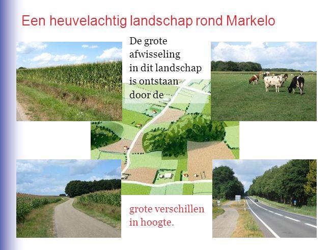 Een heuvelachtig landschap rond Markelo De grote afwisseling in dit landschap is ontstaan door de grote verschillen in hoogte.